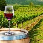 tc_wine